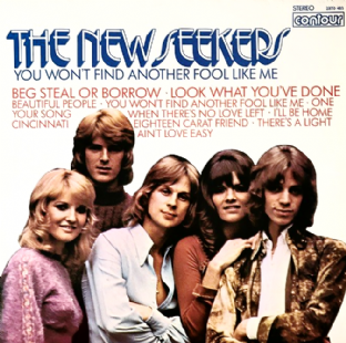 New Seekers (The) - You Won't Find Another Fool Like Me (LP) (VG/VG)